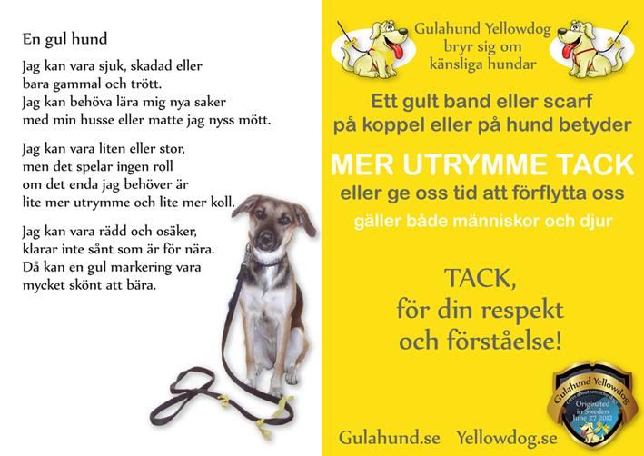 gulahund-dikt-en-gul-hund-minah